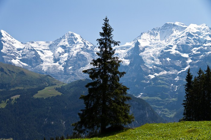Photo de   Berner Oberland: Grütschalp - Mürren