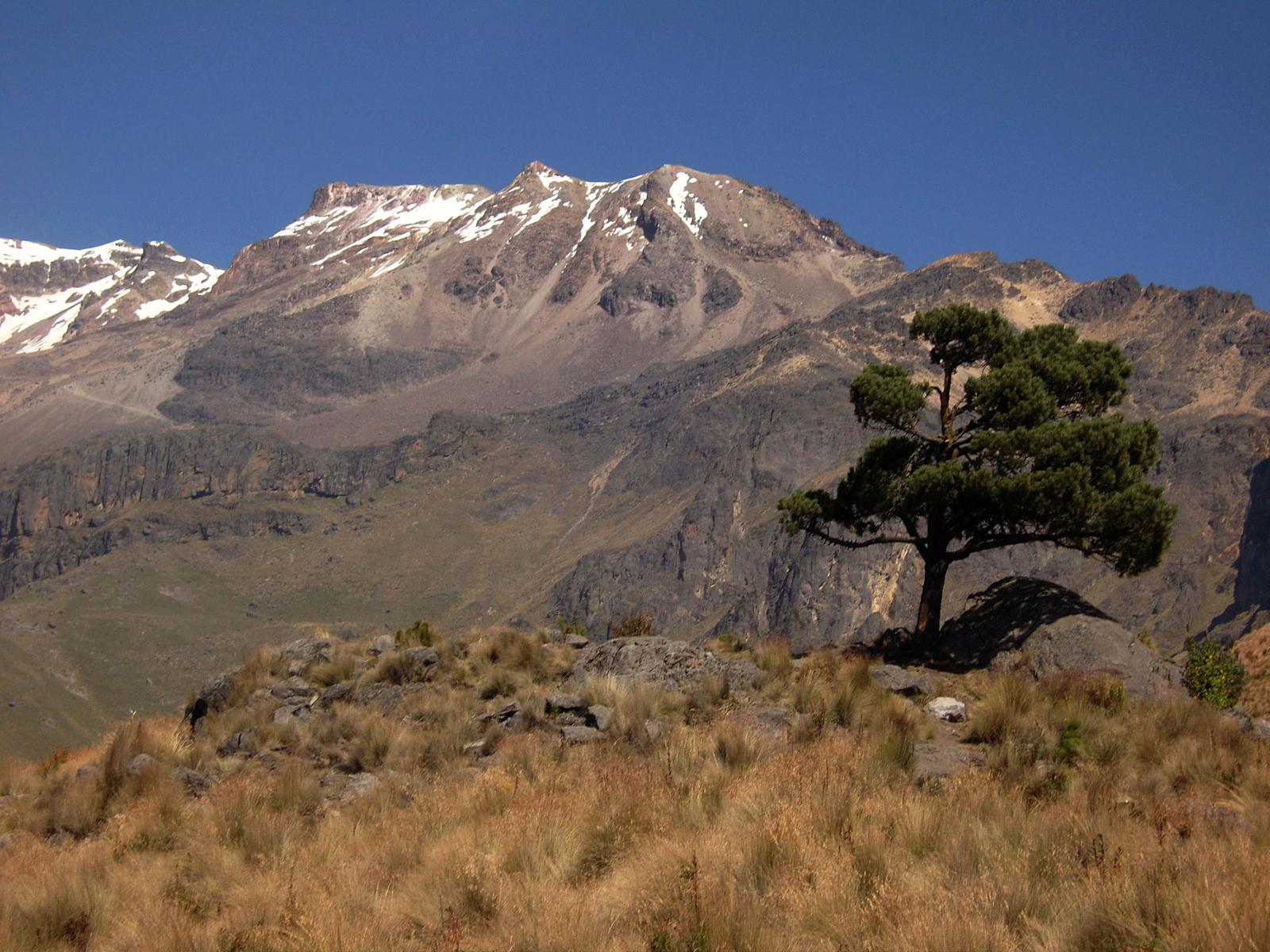 Photo of Volcan Iztaccihuatl [Xalitzintla - La Joya] by Angatu