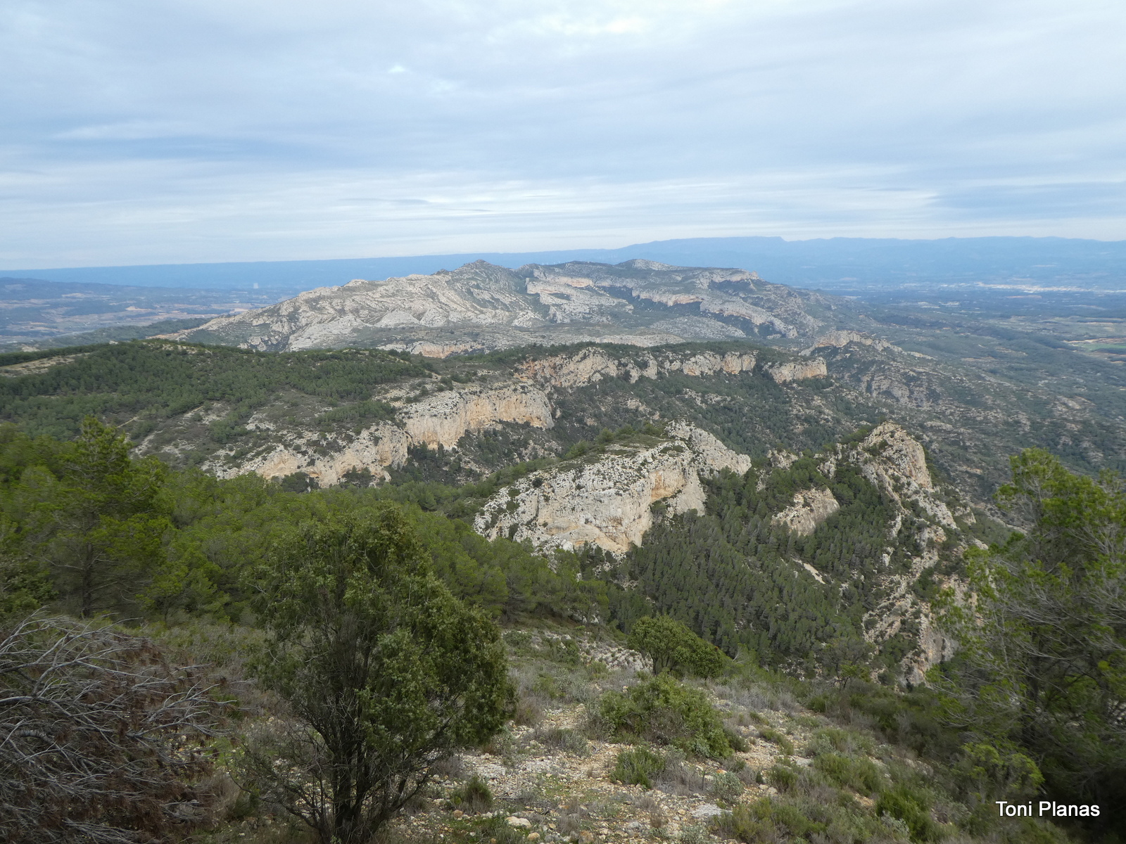 Photo of La Vall Closa de Verano