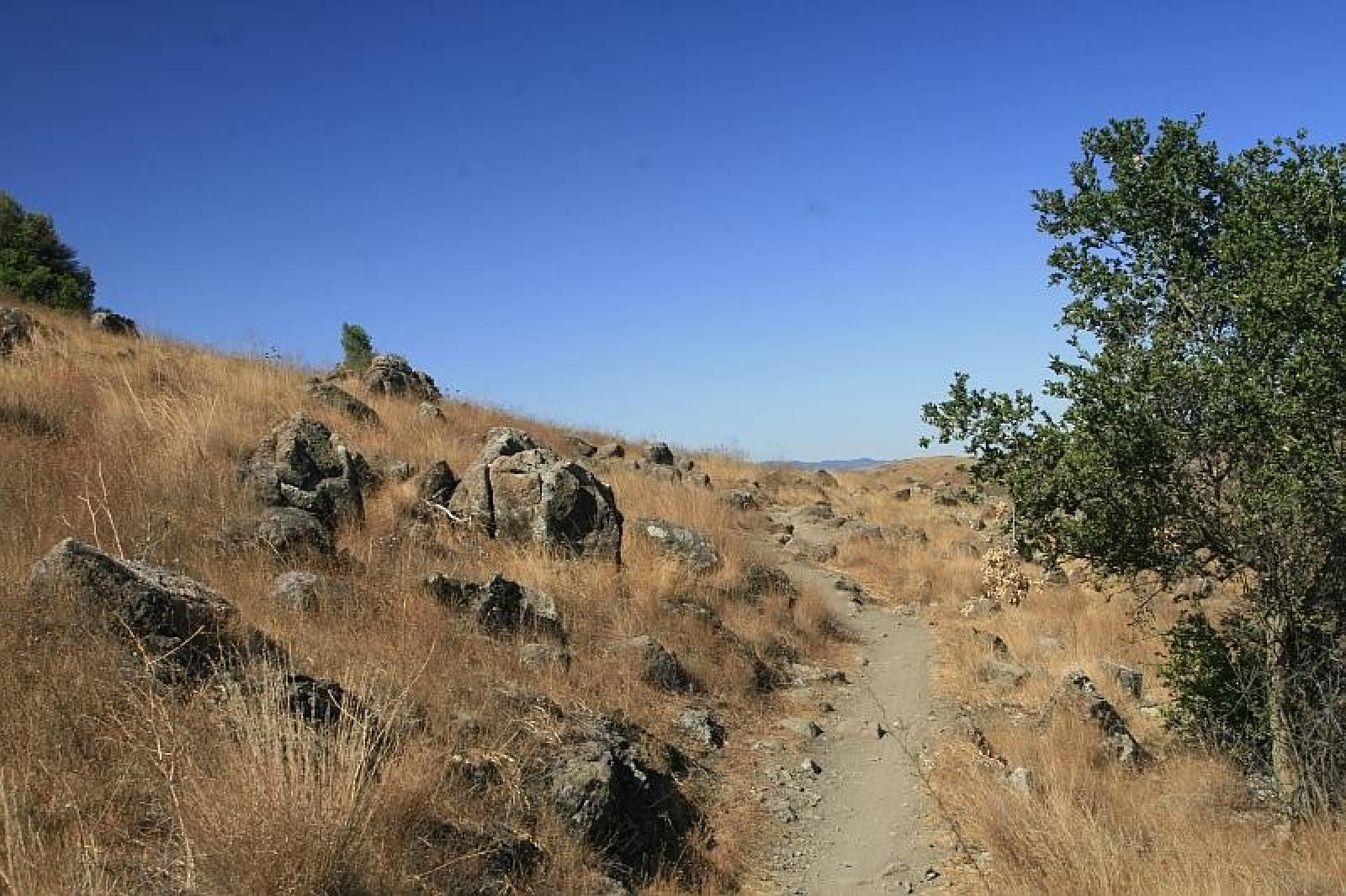 Photo de Santa Teresa County Park, San Jose, USA
