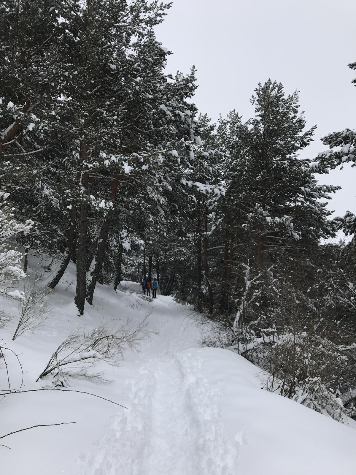 Photo of Cercedilla - Las Dehesas