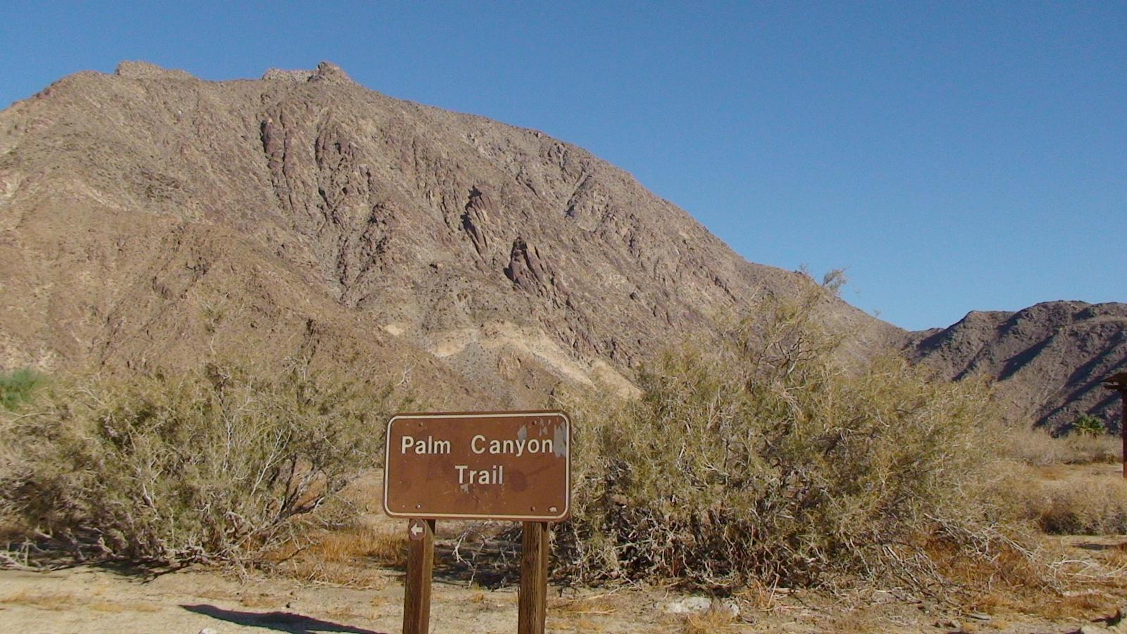 Photo de California Borrego Springs Palm Canyon Trail