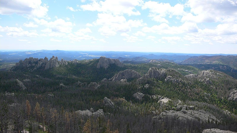 的照片 Black Hills | Harney Peak | Cathedral Spires