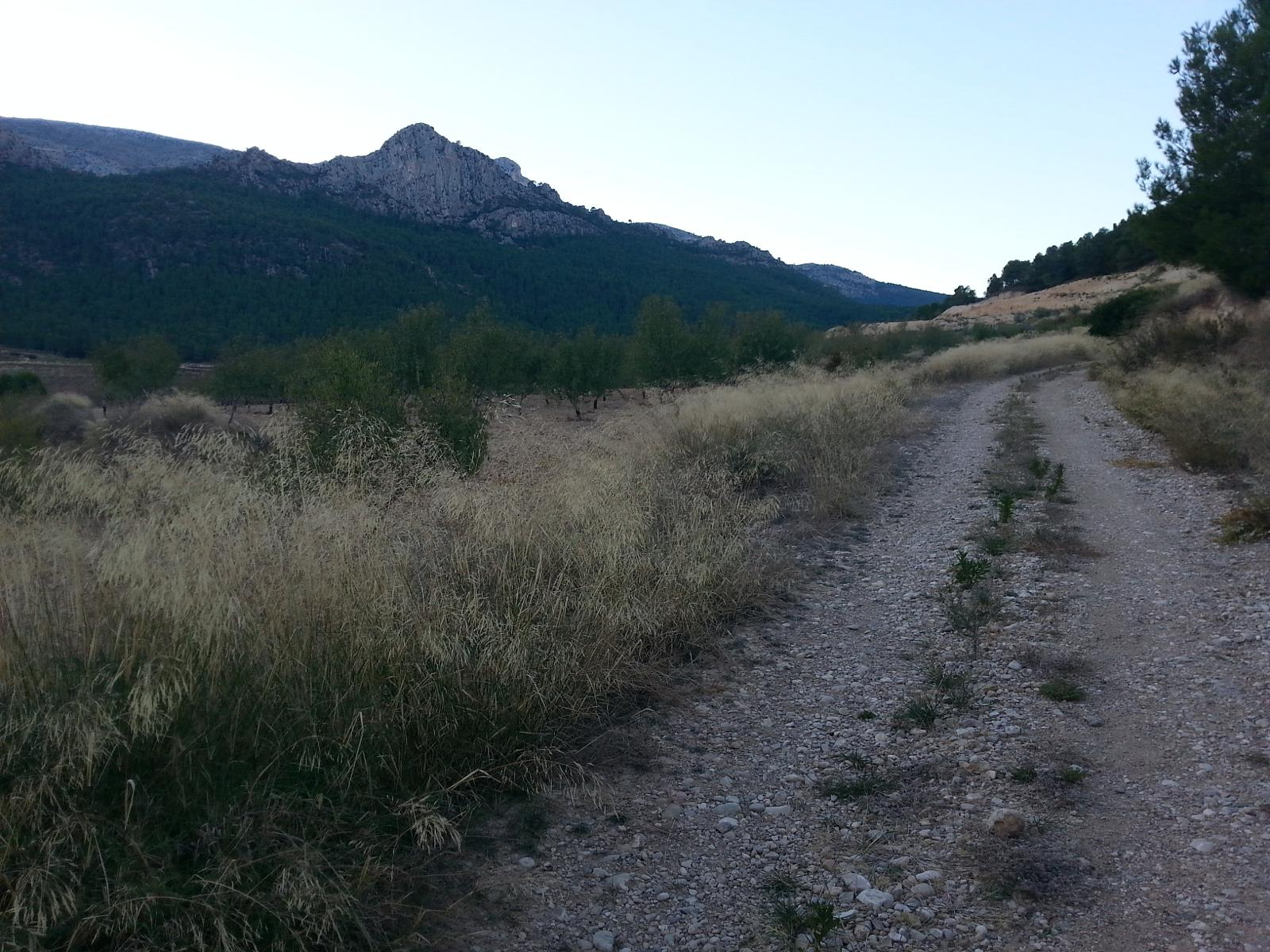 Photo of Camino del Taibilla