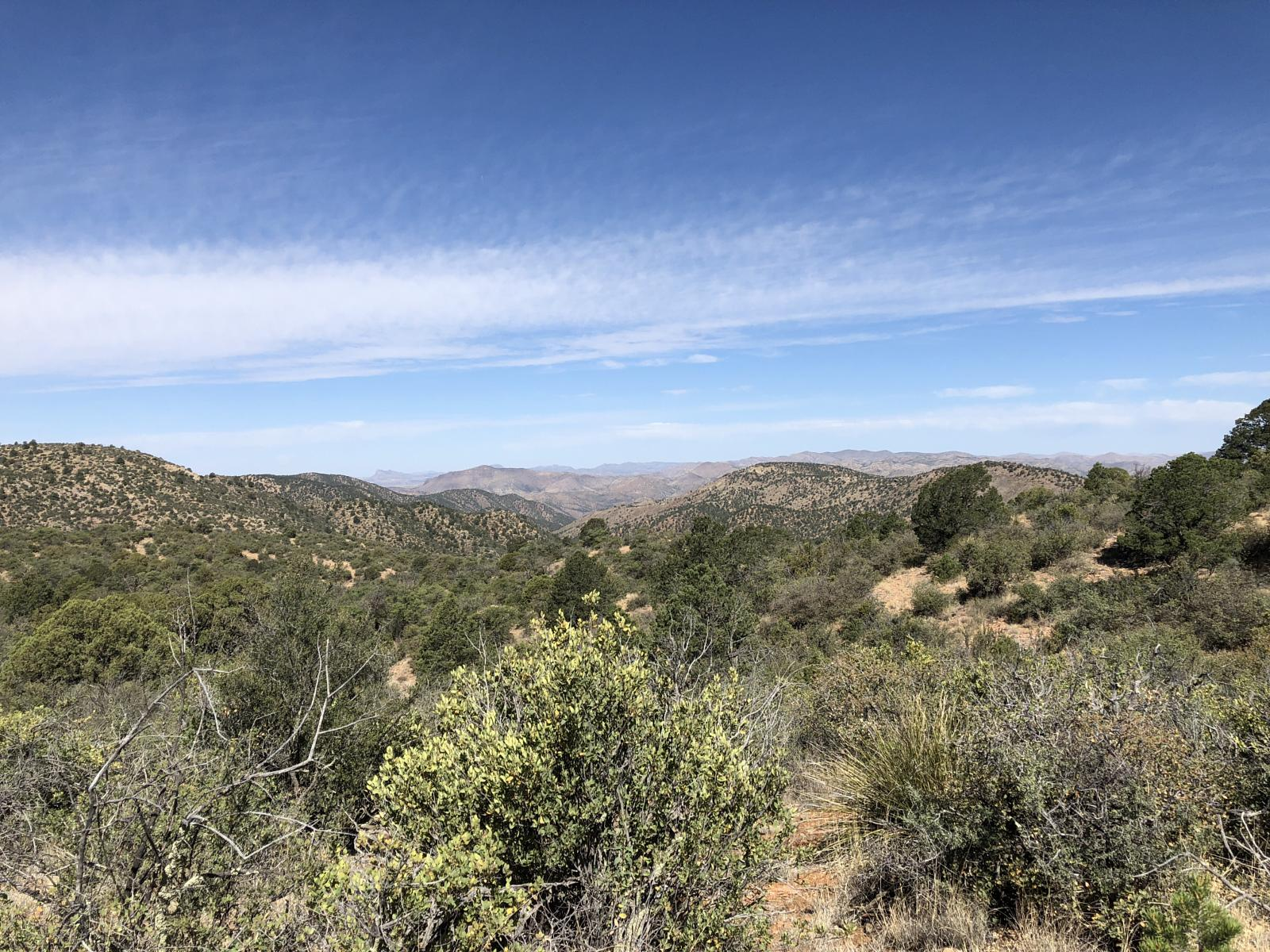 Photo of Continental Divide Trail Day 9: Gila Forest (Black Hawk) to Silver City