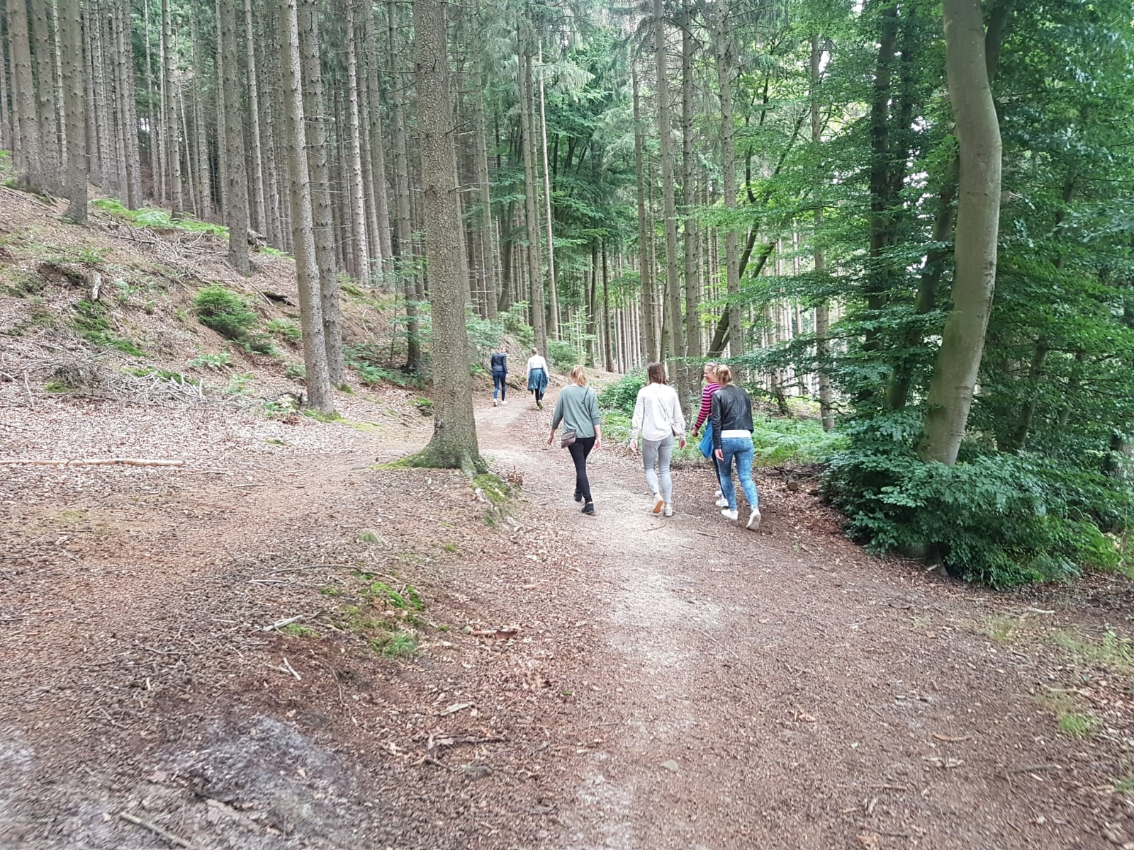 Foto di Tecklenburg lovely walk in the forest