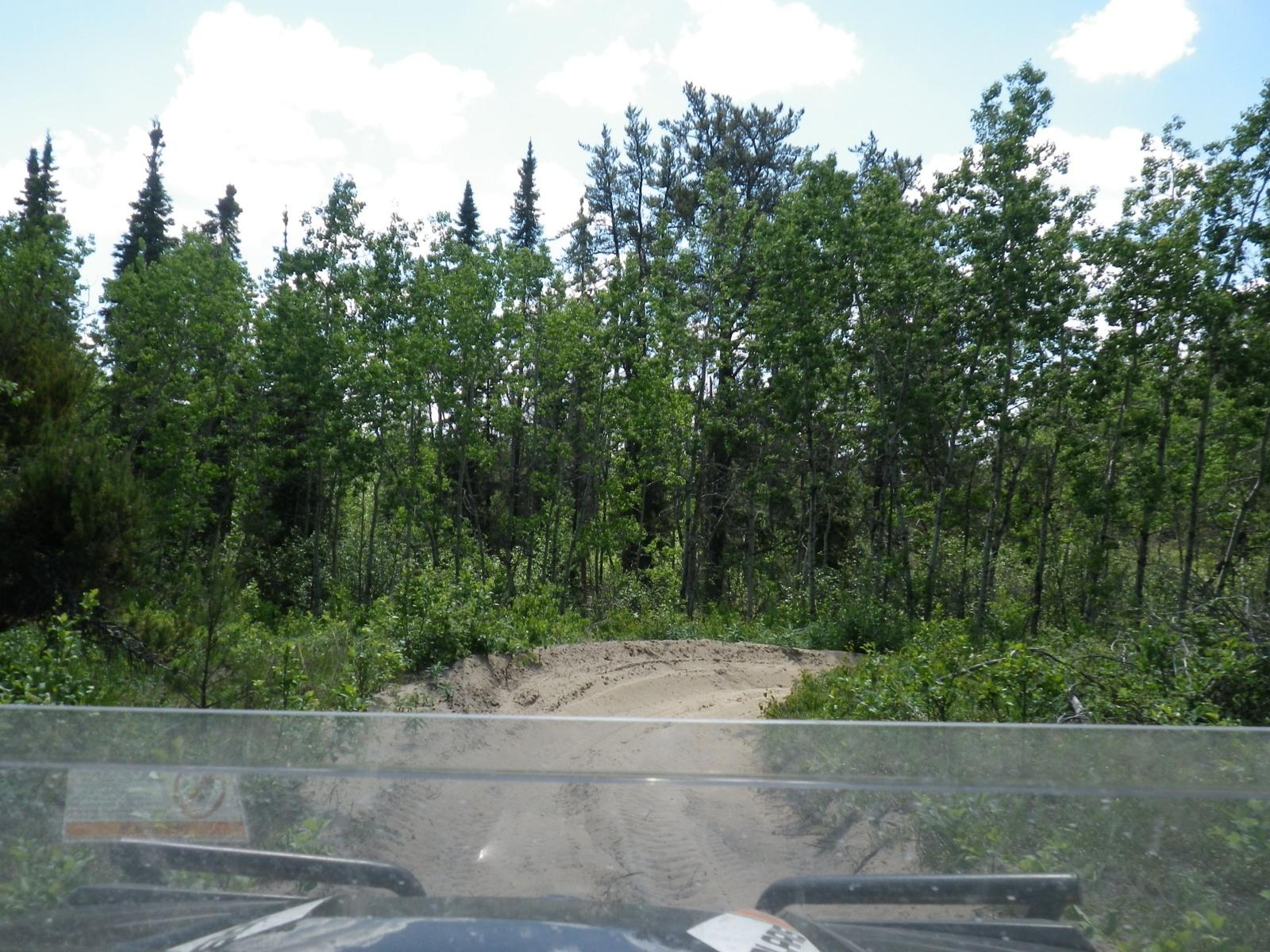 Photo of Redwater Natural Area: 15 JUN 2014 12:43
