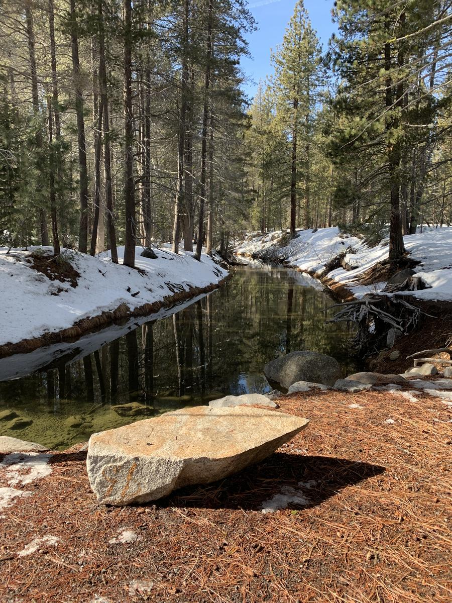 Фото Donner SP Photography