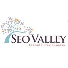 SEOValley Solutions Private Limited