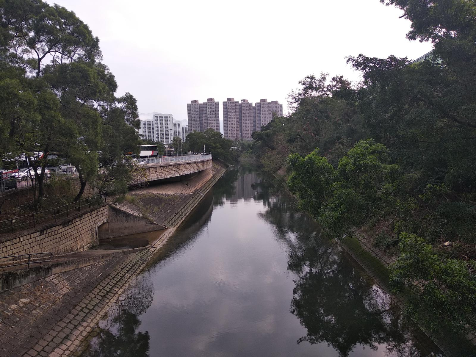 的照片 Kwong Fuk to Tai Po Kau Nature Reserve and Return