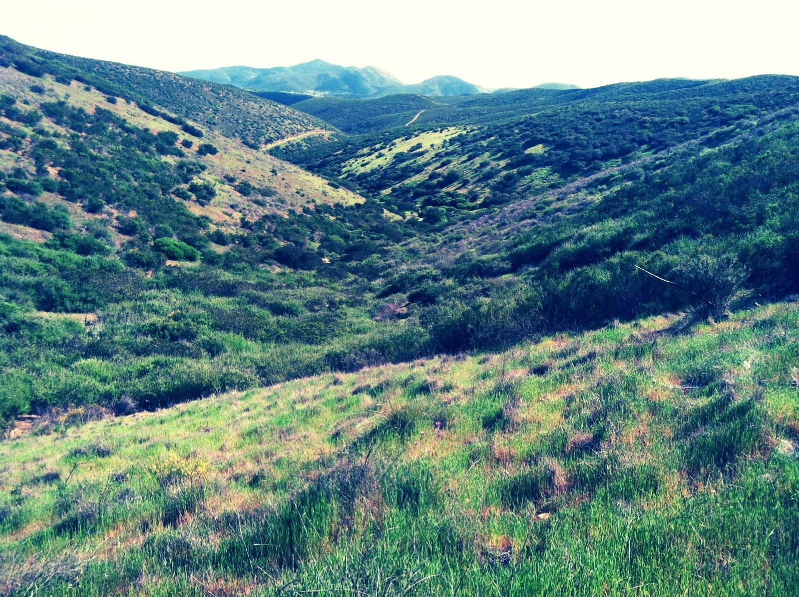 Photo de Spring Canyon to Oak Canyon from Equestrian Staging Area - Mission Trails