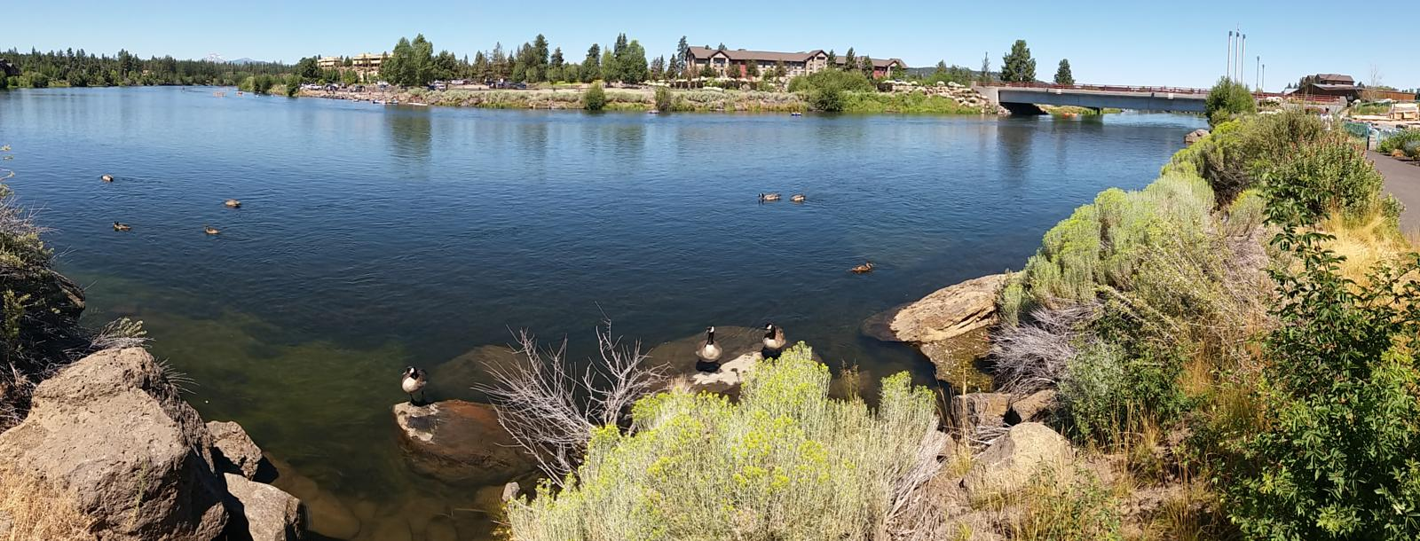 mynd af Deschutes river trail desde area comercial Old Mill en Bend