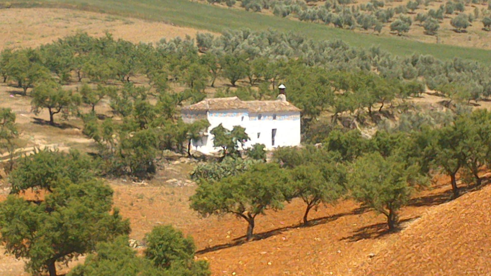 Photo of Cortijo Pilas de la Capillania