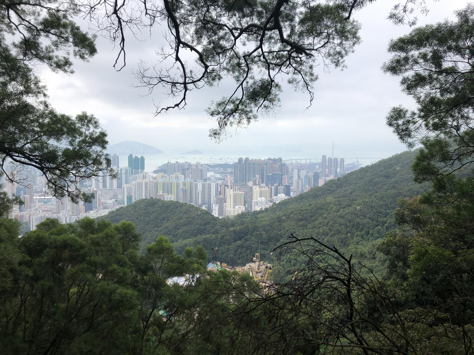 的照片 Kowloon Tong to Wong Tai Sin via Lion Rock Park