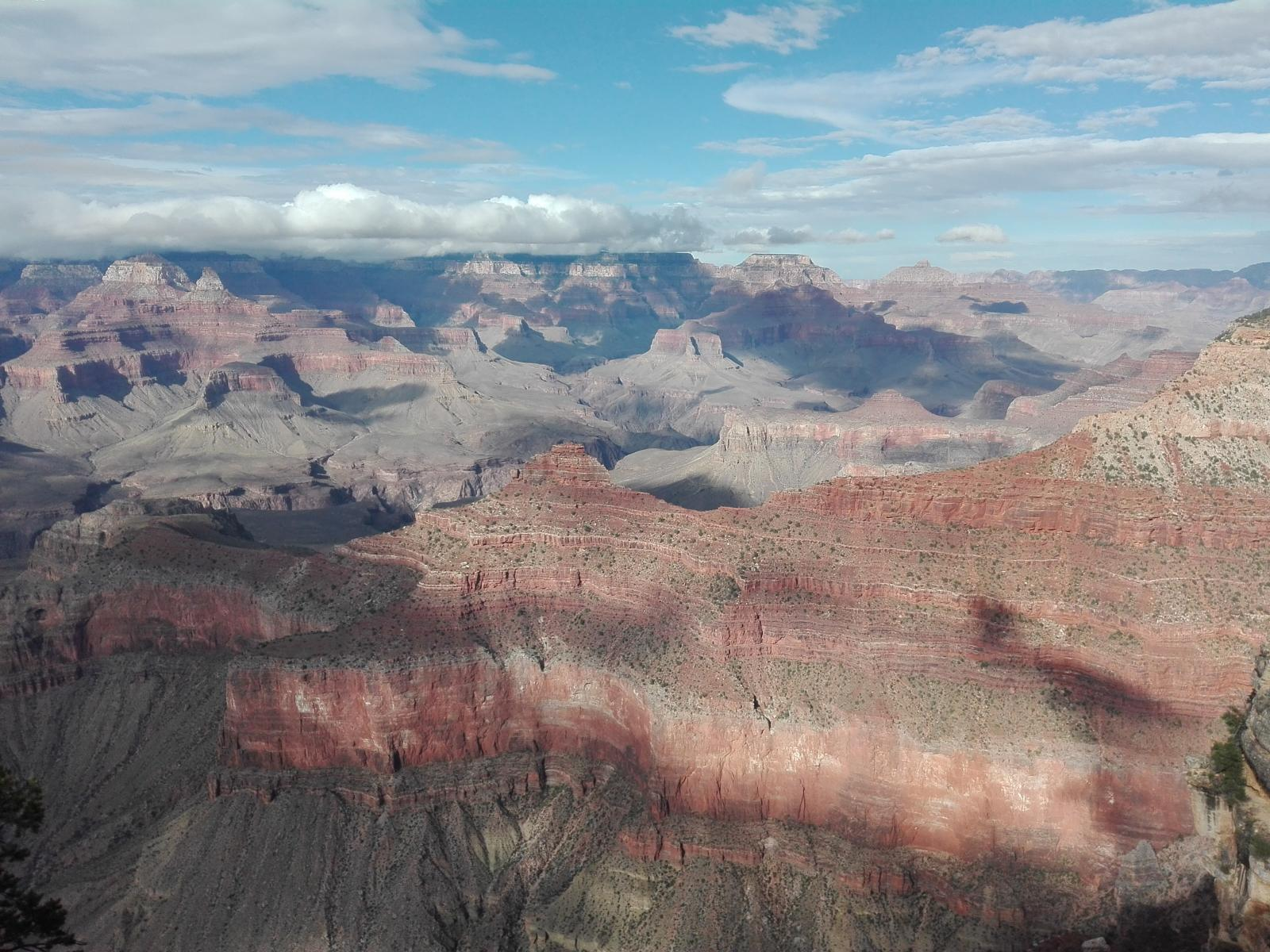 Foto de Gran Canyon: South Rim
