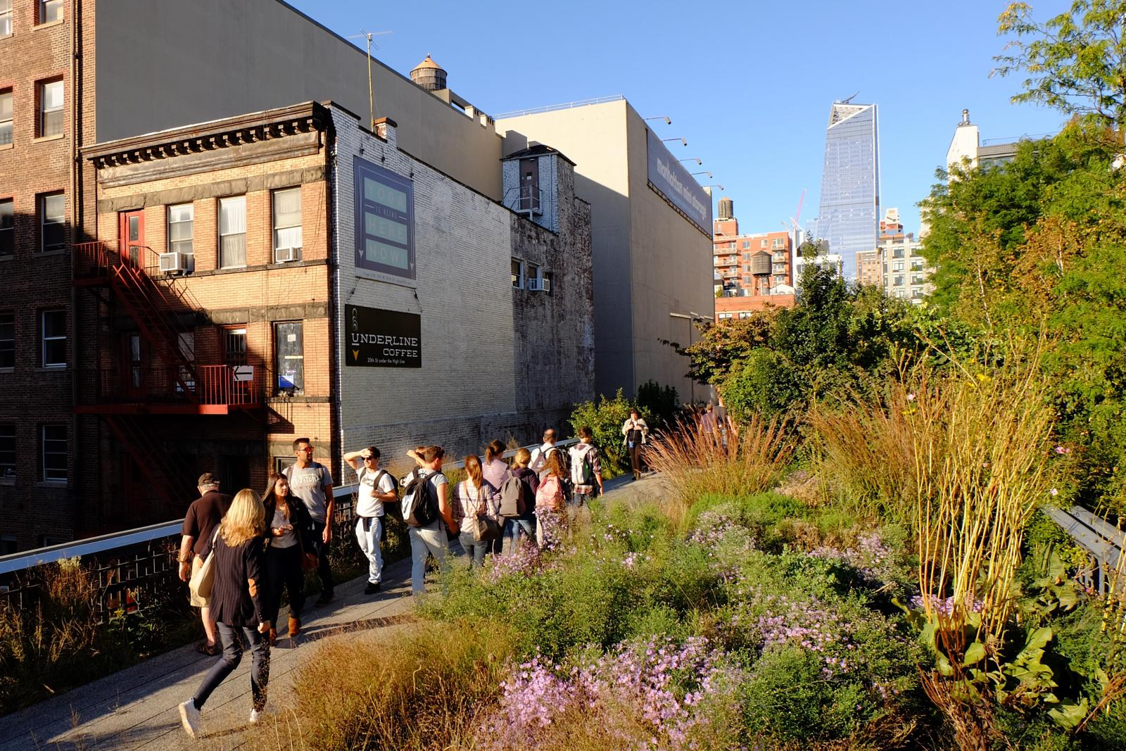 Foto af High Line, a revitalized piece of New York City's past