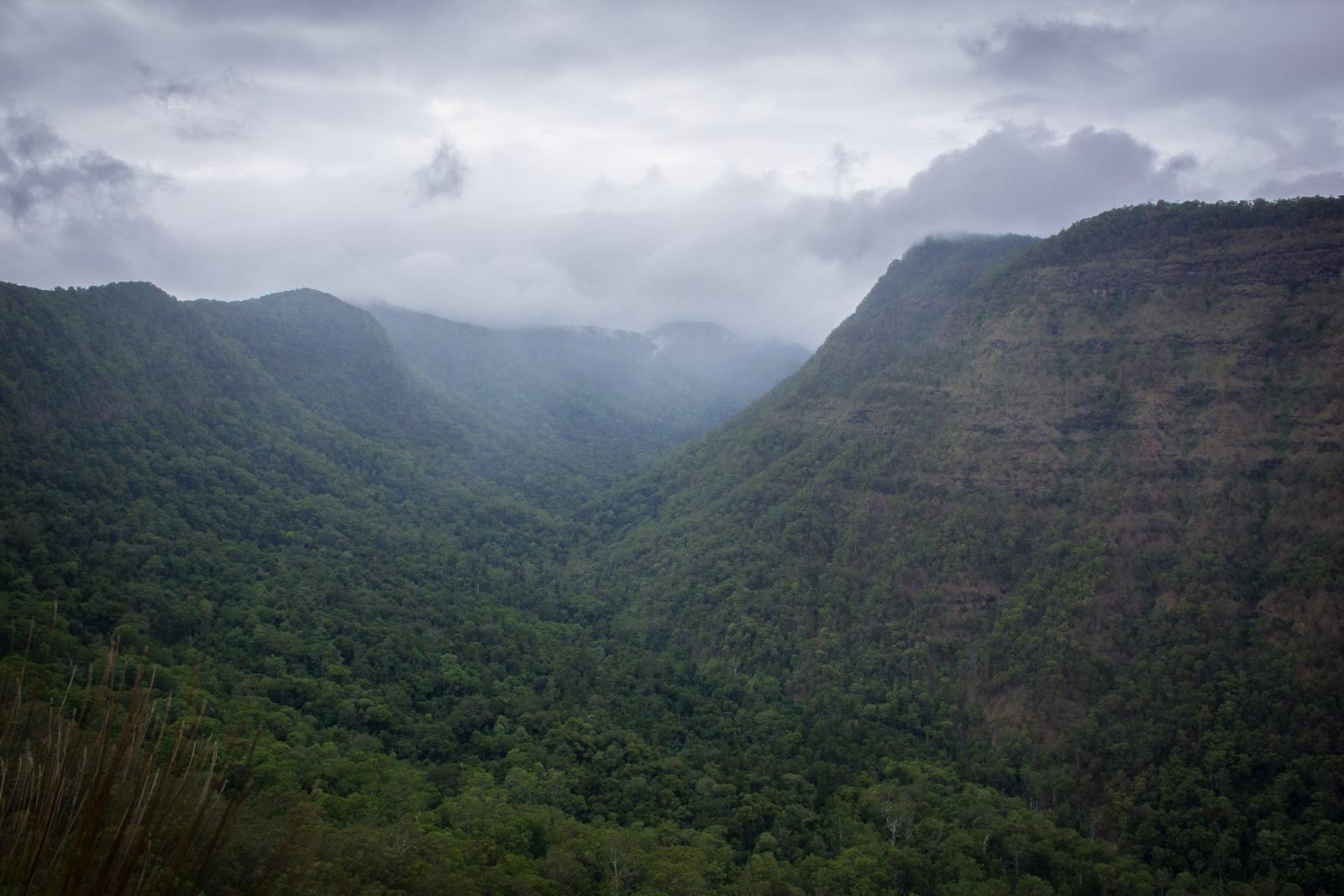Слика од Lamington NP - Lost World Plateau and Black Canyon via Shooting Creek