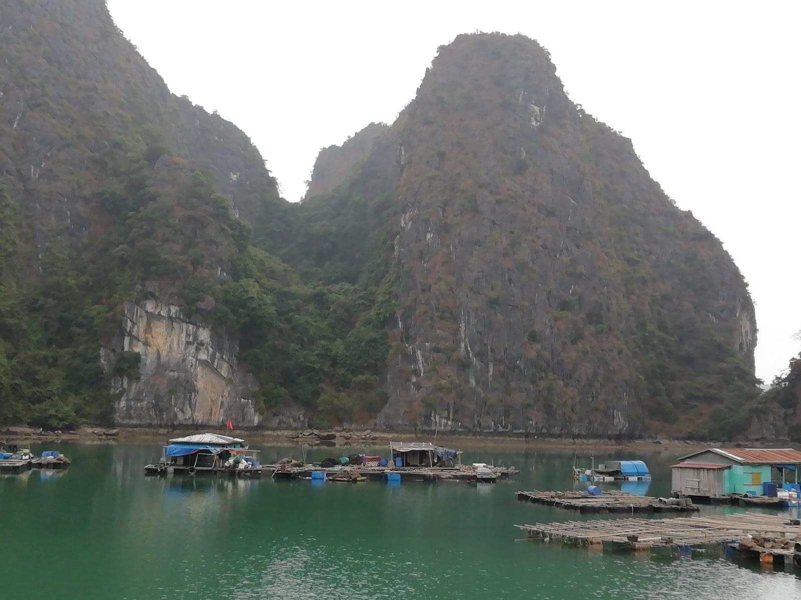 Photo de One day tour Lan Ha Bay