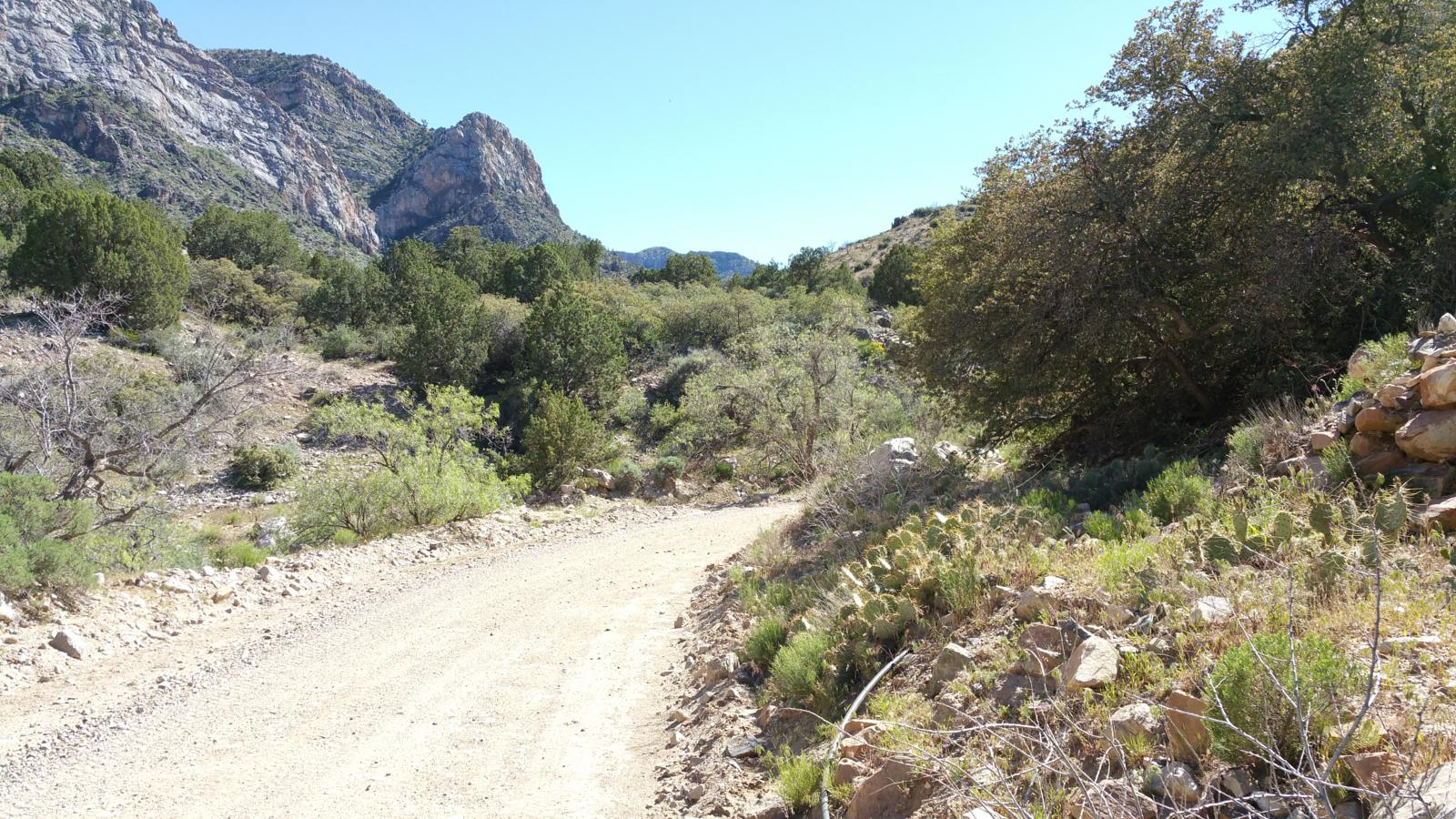 Foto de Lime Kiln Canyon Trail