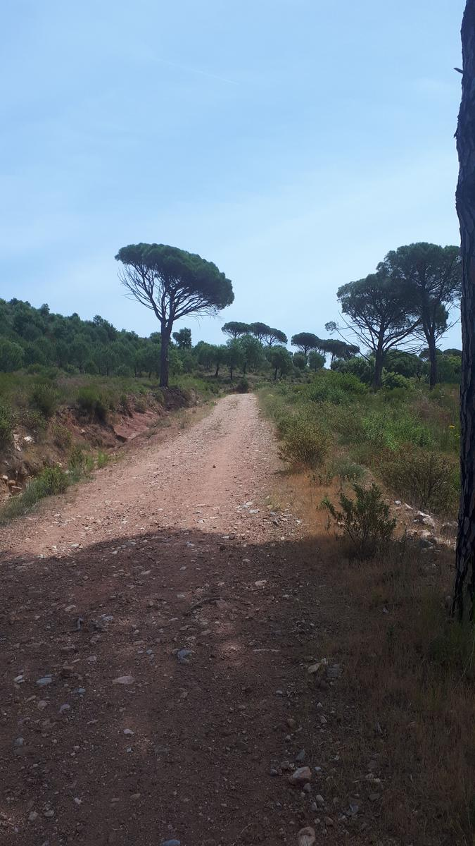 Photo of Trail close to saint endréol golf resort