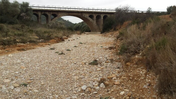 Photo of VALL D'ALBA: VERTICE BUSTAL BLANCH