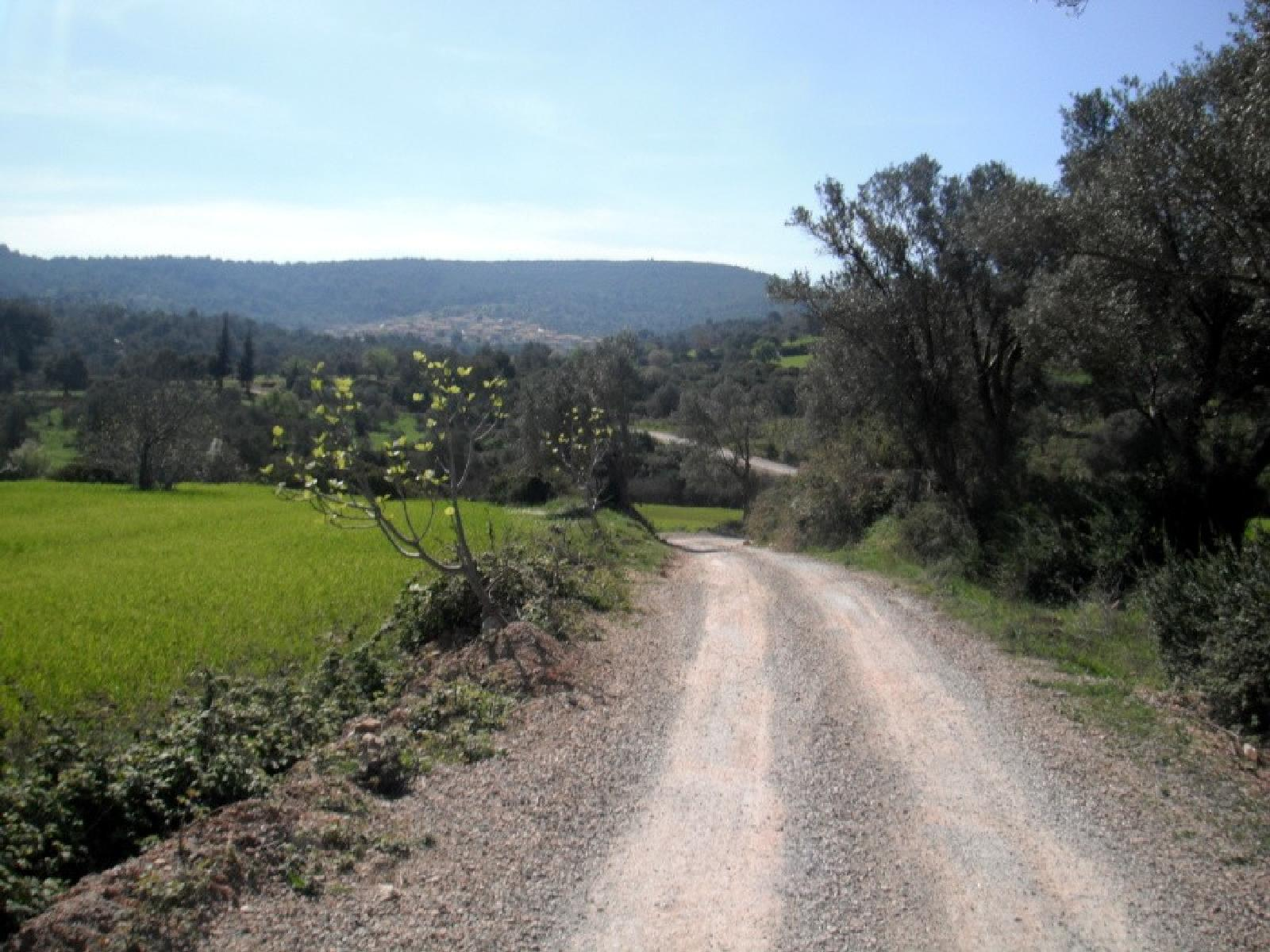 Photo of From Highway to Kocadag hill