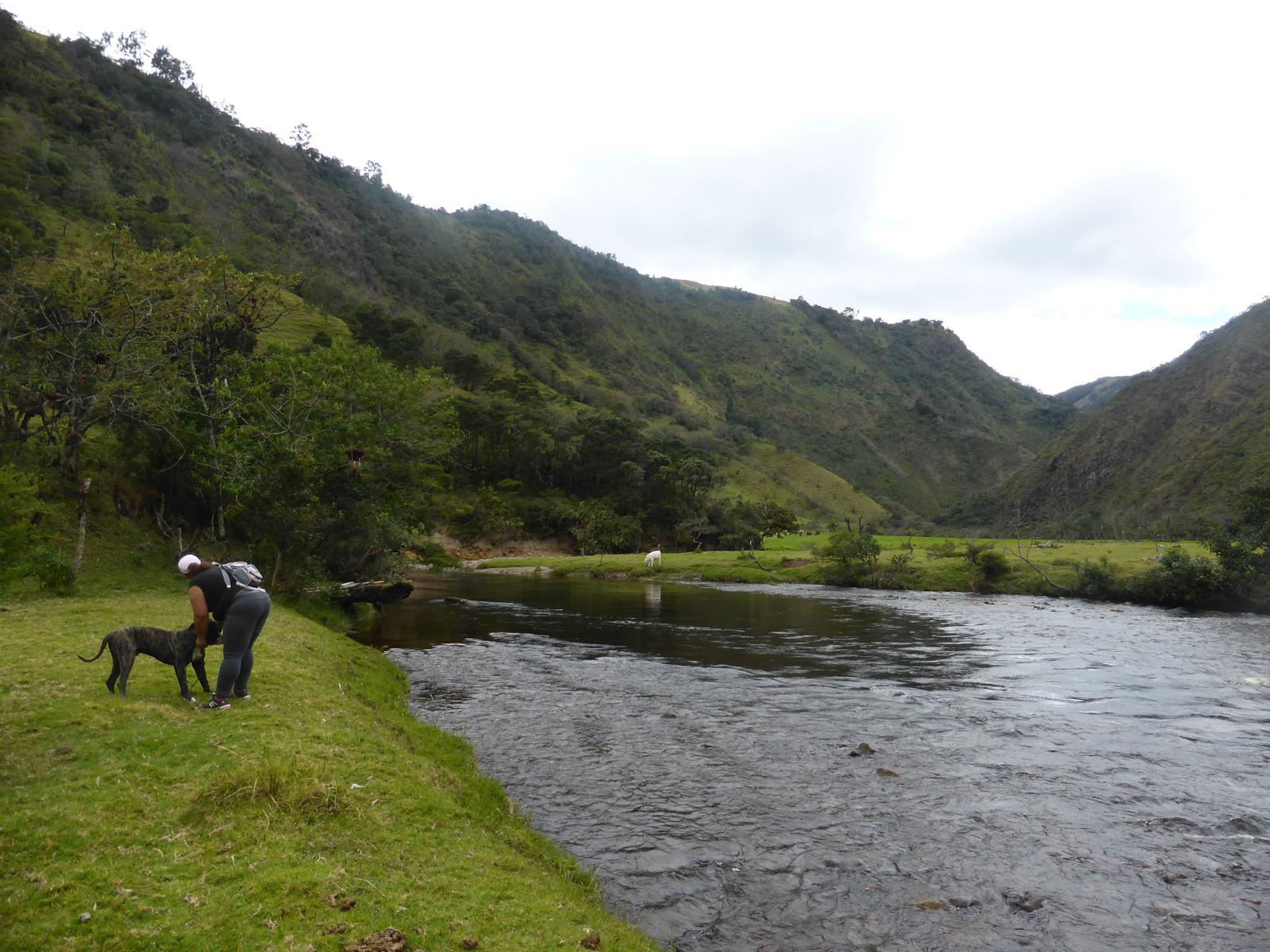 Foto de Trail Coconuco - Path to the Rio Cauca