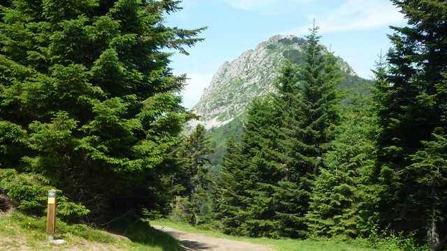 Photo of (Pyrenees France)Camping Mialanne a Col de Couraduque