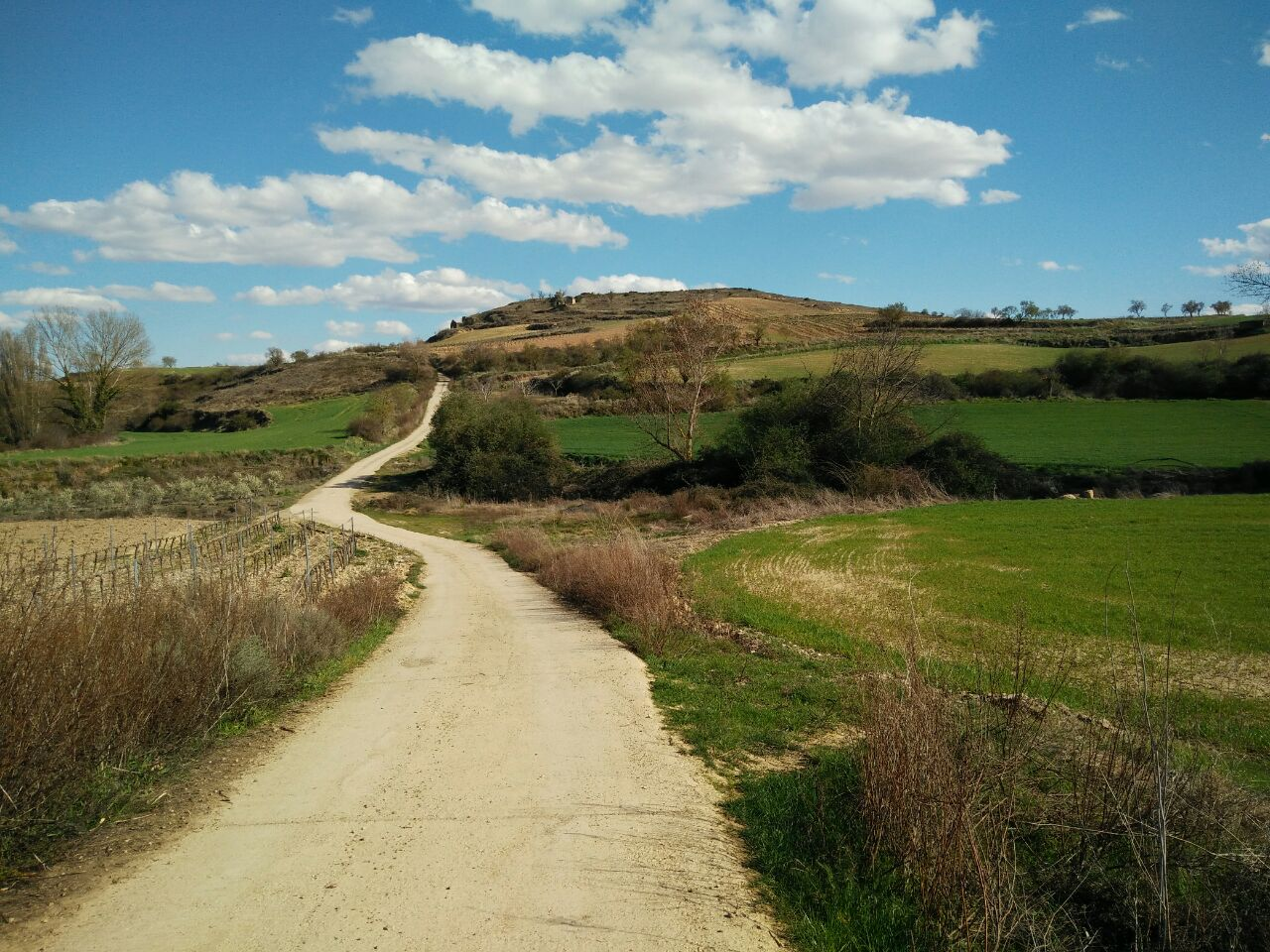Photo of Huertas de Briones, a orillas del Ebro