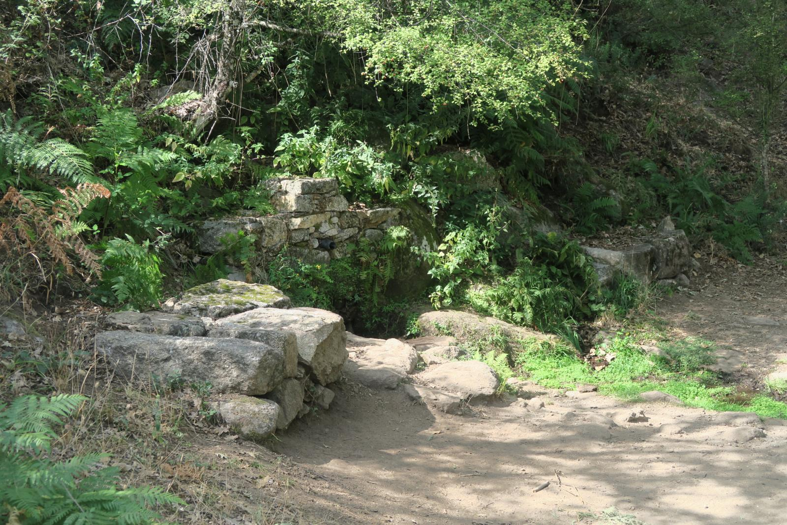 Photo of Fuente del Camino
