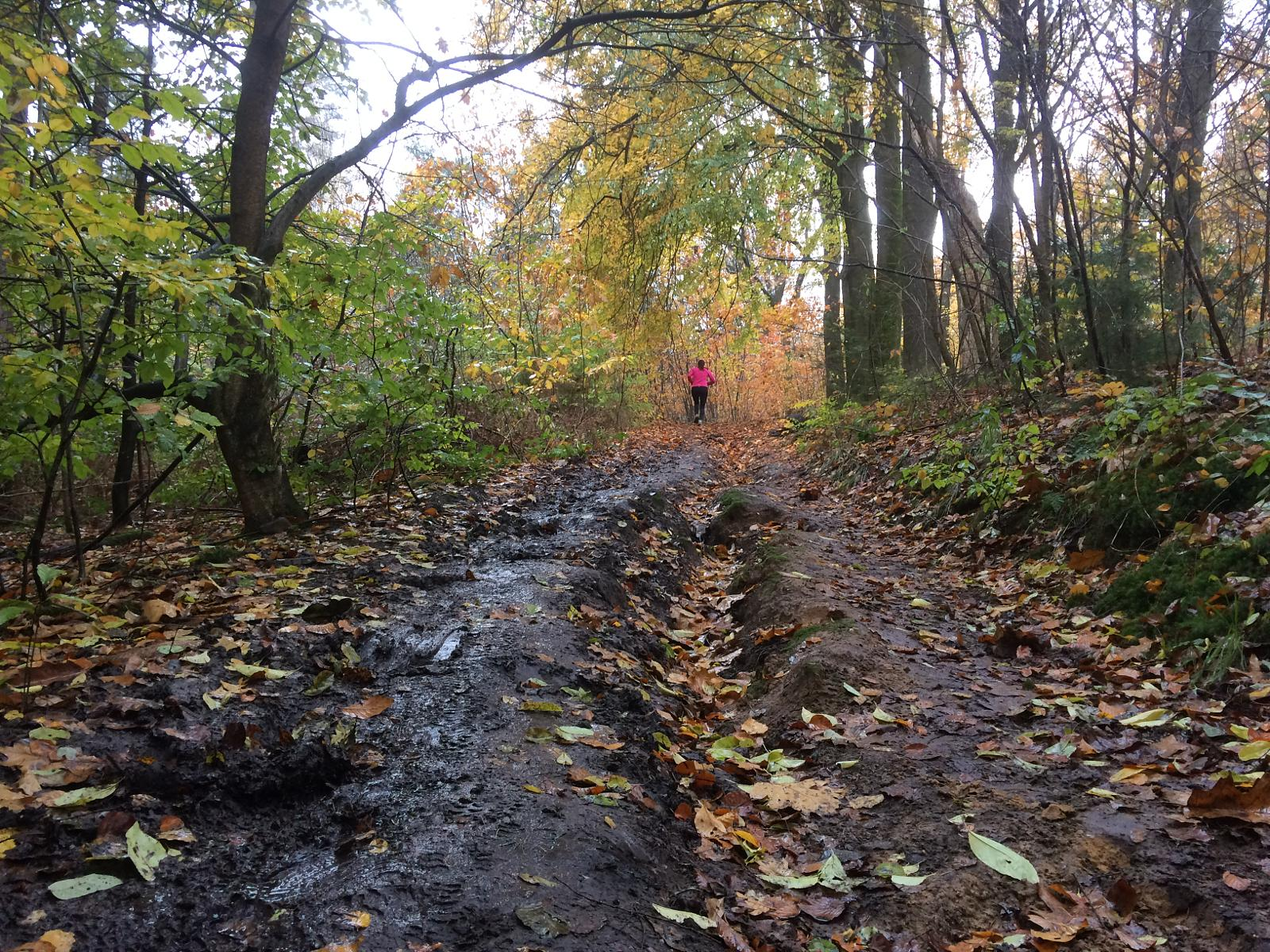 Слика од Trail running on top of the Duivelsberg