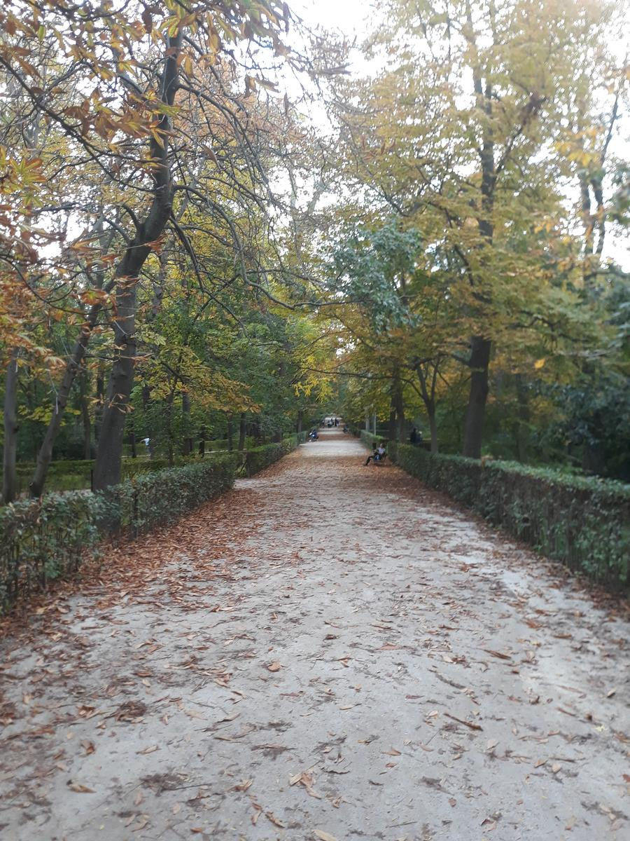 Foto de Trailing. Day 4. Retiro