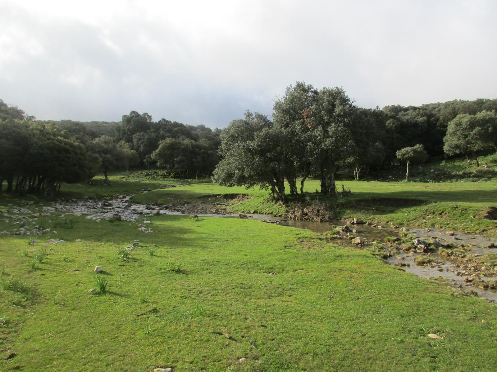 Photo of ARROYO DE LA FUENSANTA