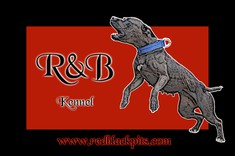 RBKennel