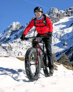 Massimo fat bike Verona