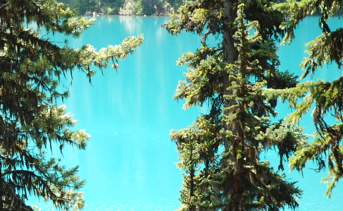 Foto van Joffre Lakes Provincial Park, BC - the popular lake and mountain hike near Whistler