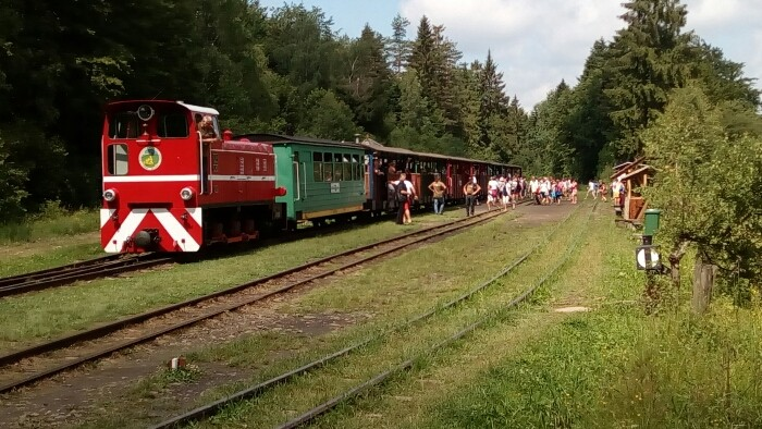Photo of Forest Railway
