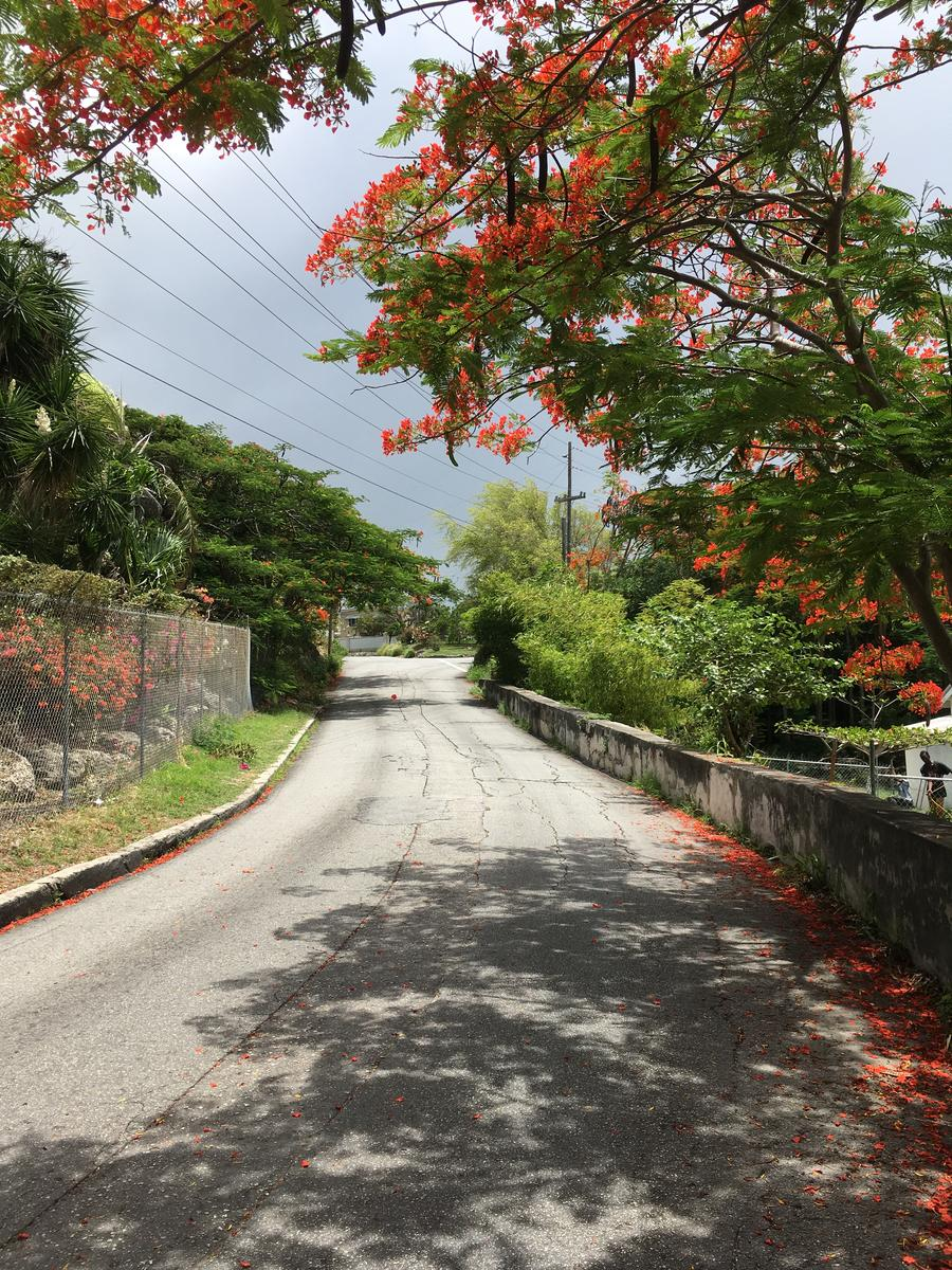 Photo of Maxwell Hill Road