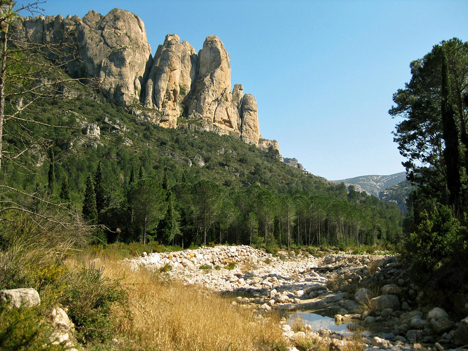Photo of El Camí brancal del Montsià
