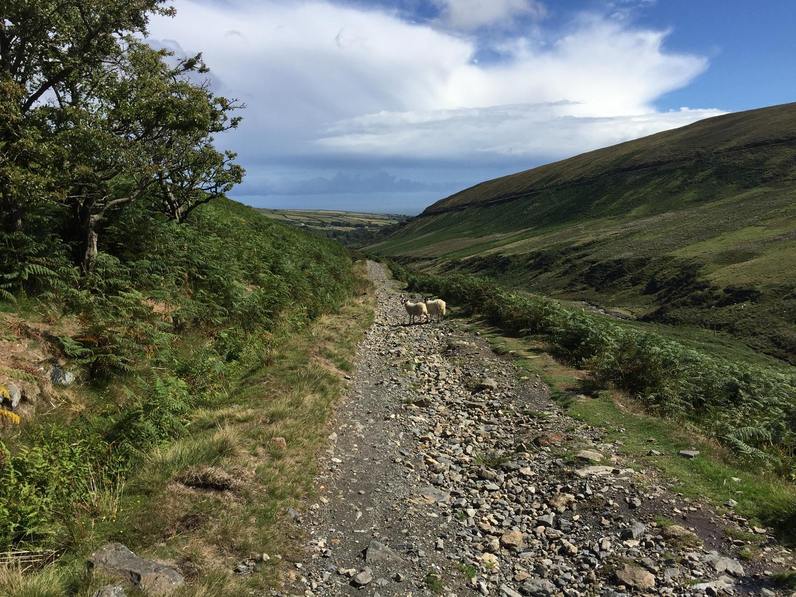 Фото Snaefell to Laxey