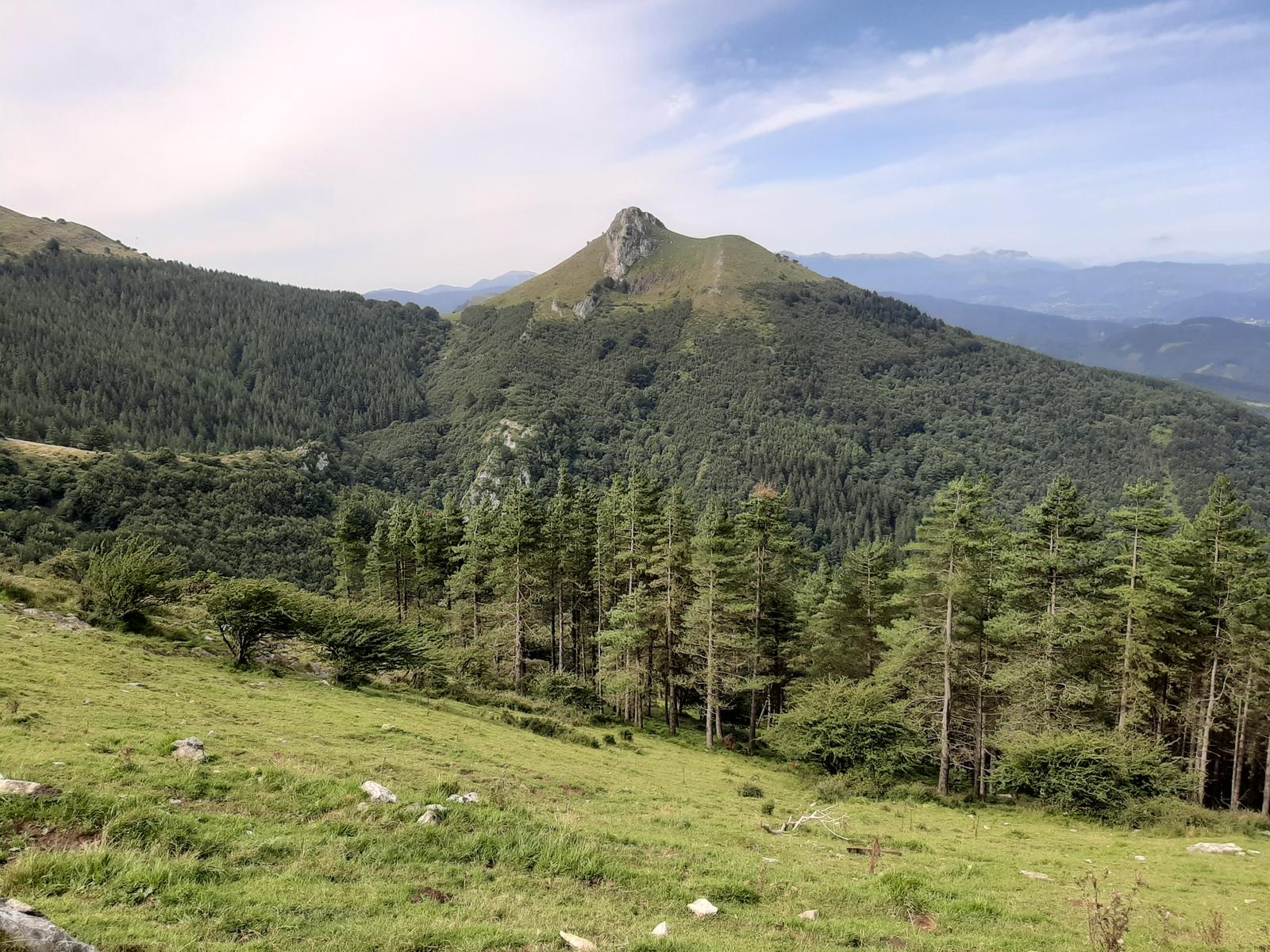 Photo of TXIDONKI