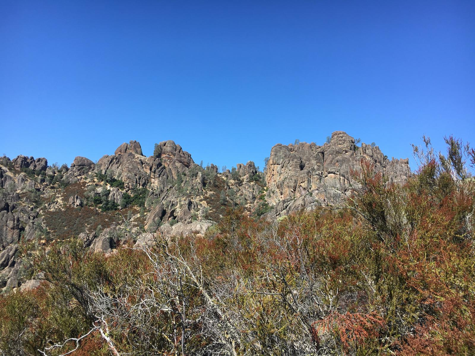 Foto de Pinnacles National Park
