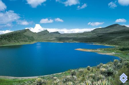 Foto de sumapaz-No Name-