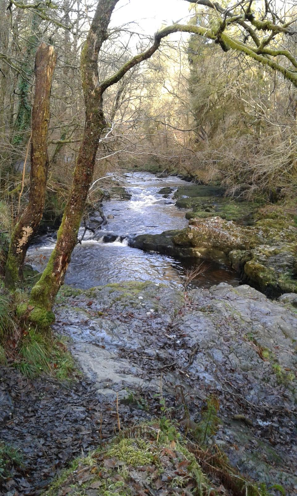 Photo of Waterfall Country (Vale of Neath)