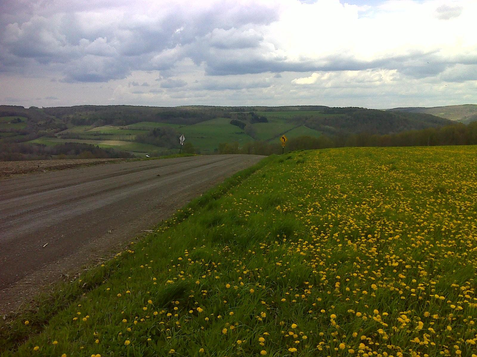 argazkia Finger Lakes - North Country Trail, a mostly road walk piece 13-MAY-16 03:52:35 PM