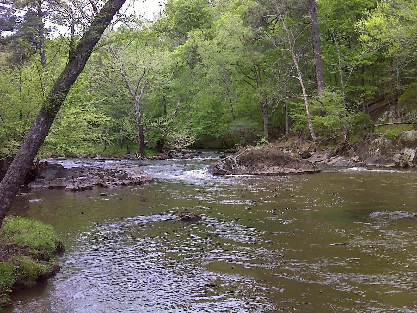 Photo of Mountains-to-Sea Trail, Eno River, wonderful walking beside the river 28-APR-14 10:48:36 AM