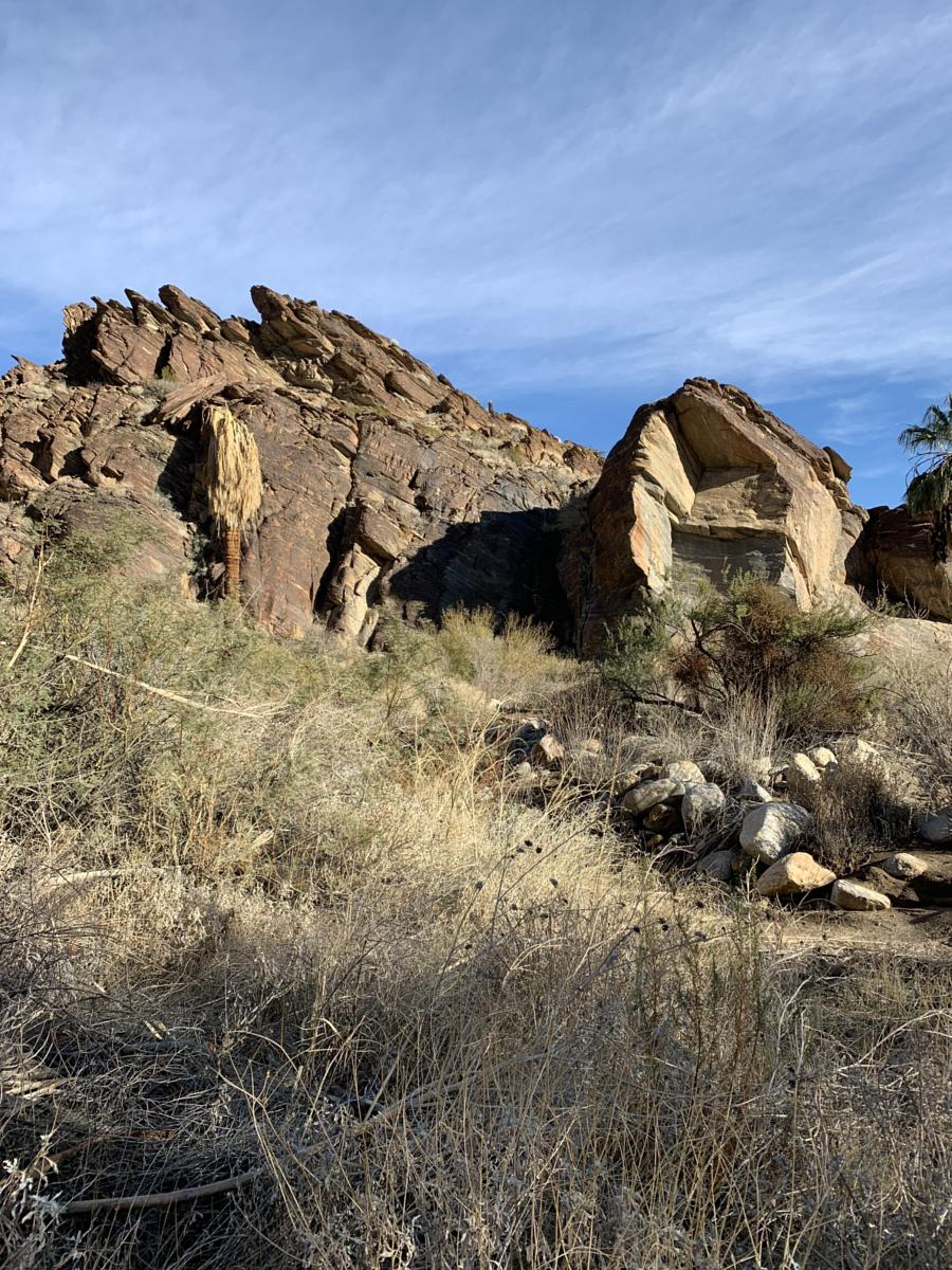 Foto de Murray Canyon - in Palm Springs Indian Canyons