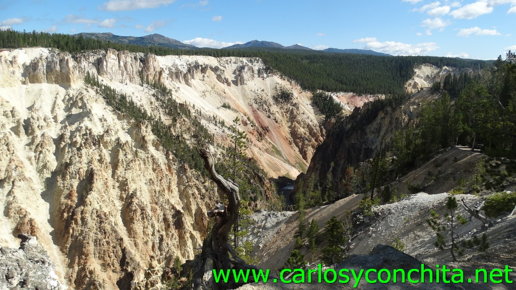Fotoğraf South Rim Grand Canyon Yellowstone