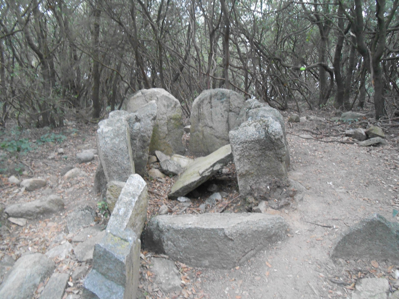 Photo of Dolmen de Can Gurri