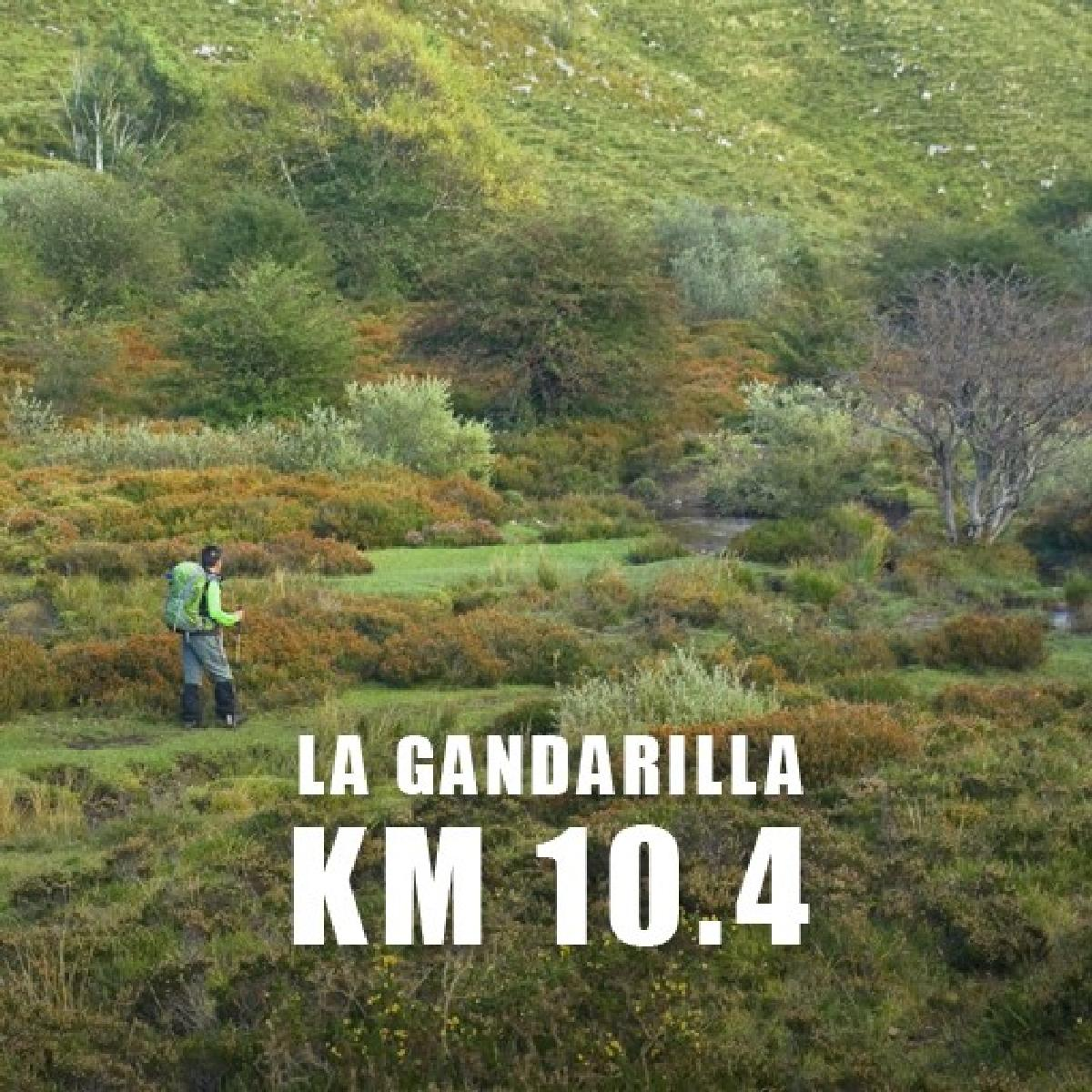Photo of 10.4 GANDARILLA